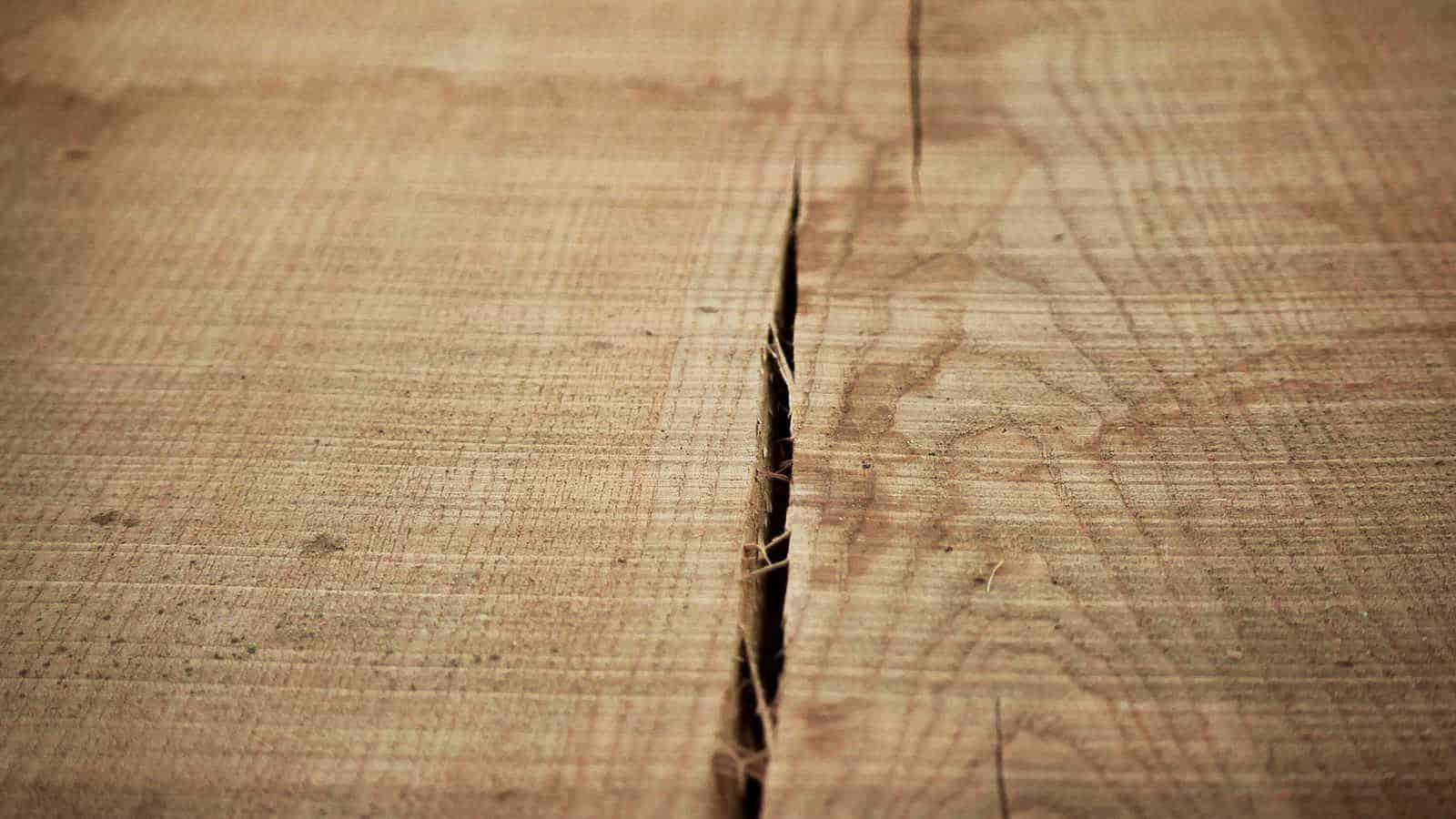 essence bois authentique chêne frêne